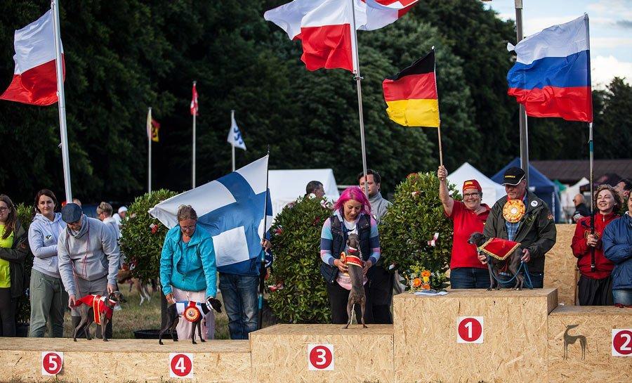 Coursingowe Mistrzostwa Europy 2017